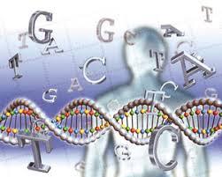 منابع آزمون کاشناسی ارشد ژنتیک انسانی