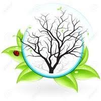 منابع آزمون کارشناسی ارشد زیست شناسی گیاهی