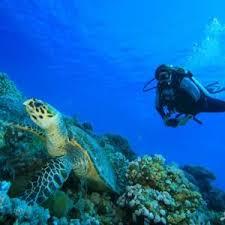 منابع آزمون کارشناسی ارشد زیست شناسی دریا