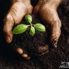 منابع آزمون کارشناسی ارشد مجموعه زراعت و اصلاح نباتات