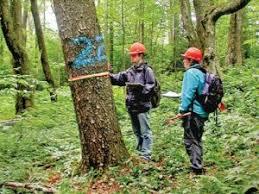 منابع آزمون کارشناسی ارشد علوم و مهندسی جنگل