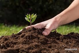 منابع آزمون کارشناسی ارشد مدیریت حاصلخیزی، زیست فناوری و منابع خاک