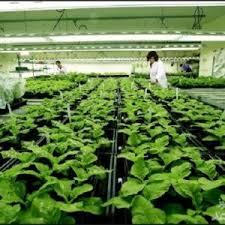 منابع آزمون کارشناسی ارشد بیوتکنولوژی کشاورزی