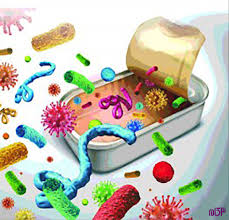 منابع آزمون کارشناسی ارشد میکروب شناسی موادغذایی