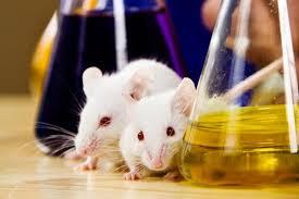 منابع آزمون کارشناسی ارشد زیست شناسی جانوری
